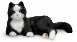 Bilde av Interaktiv katt - Line