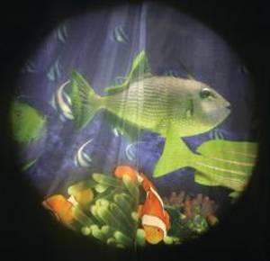 Bilde av Solar effekthjul tropiske fisker 15cm